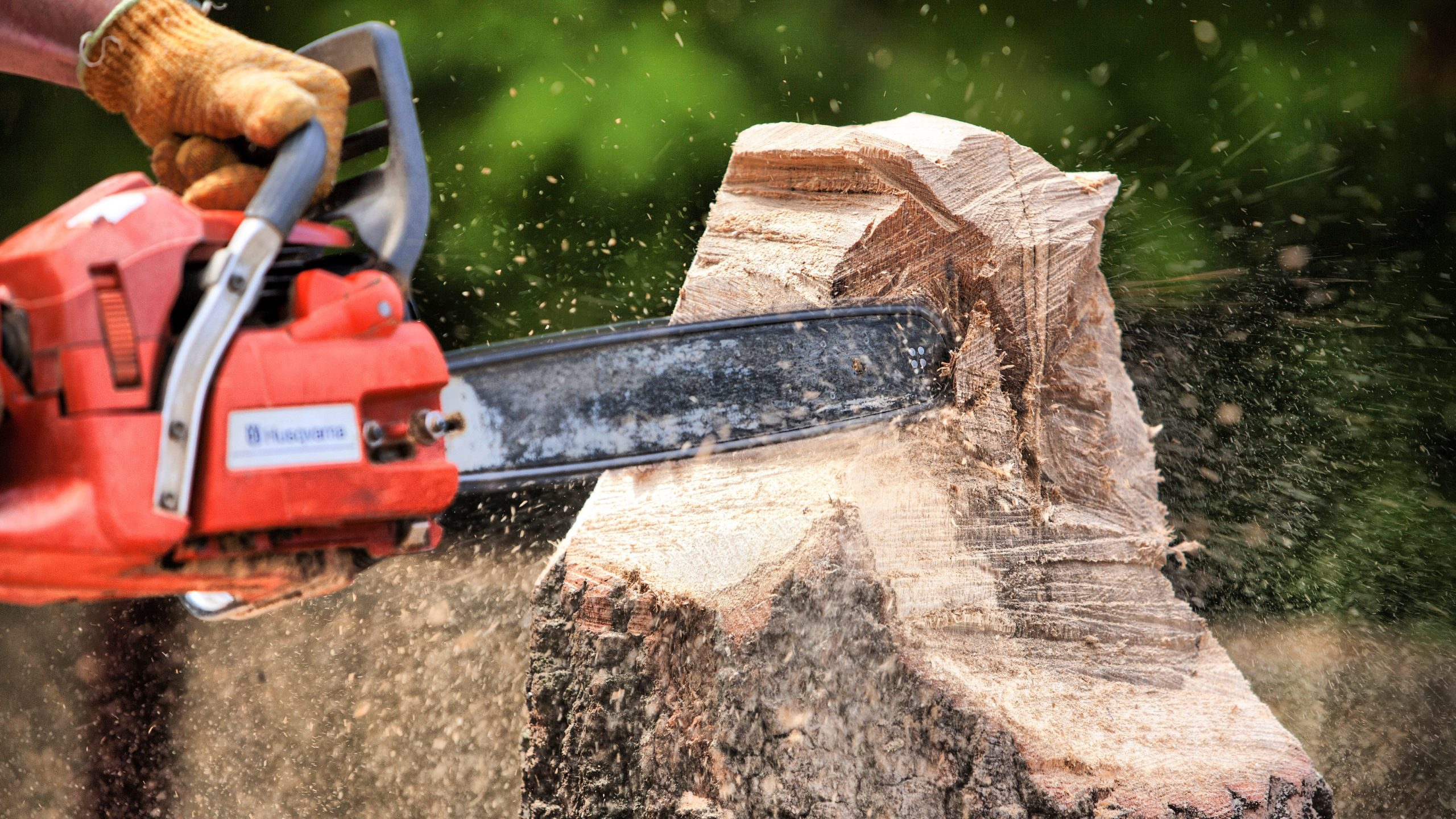 chainsaw is cutting