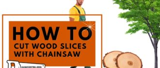 How to Cut Wood Slices With Chainsaw - 10 Useful Tips
