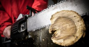 how to clean a chainsaw