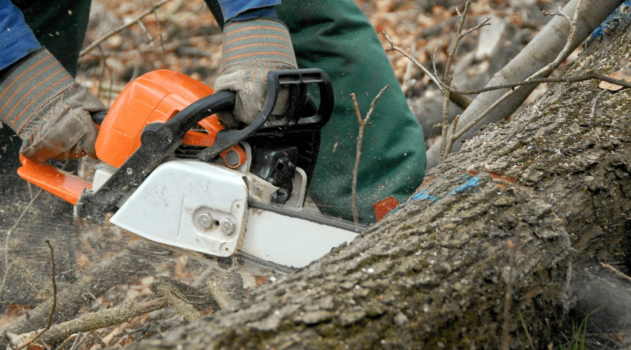 chainsaw is cutting the log deeply