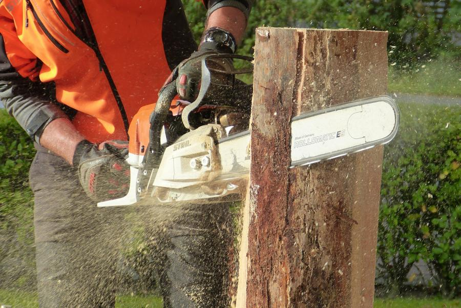 chainsaw is cutting the log straight