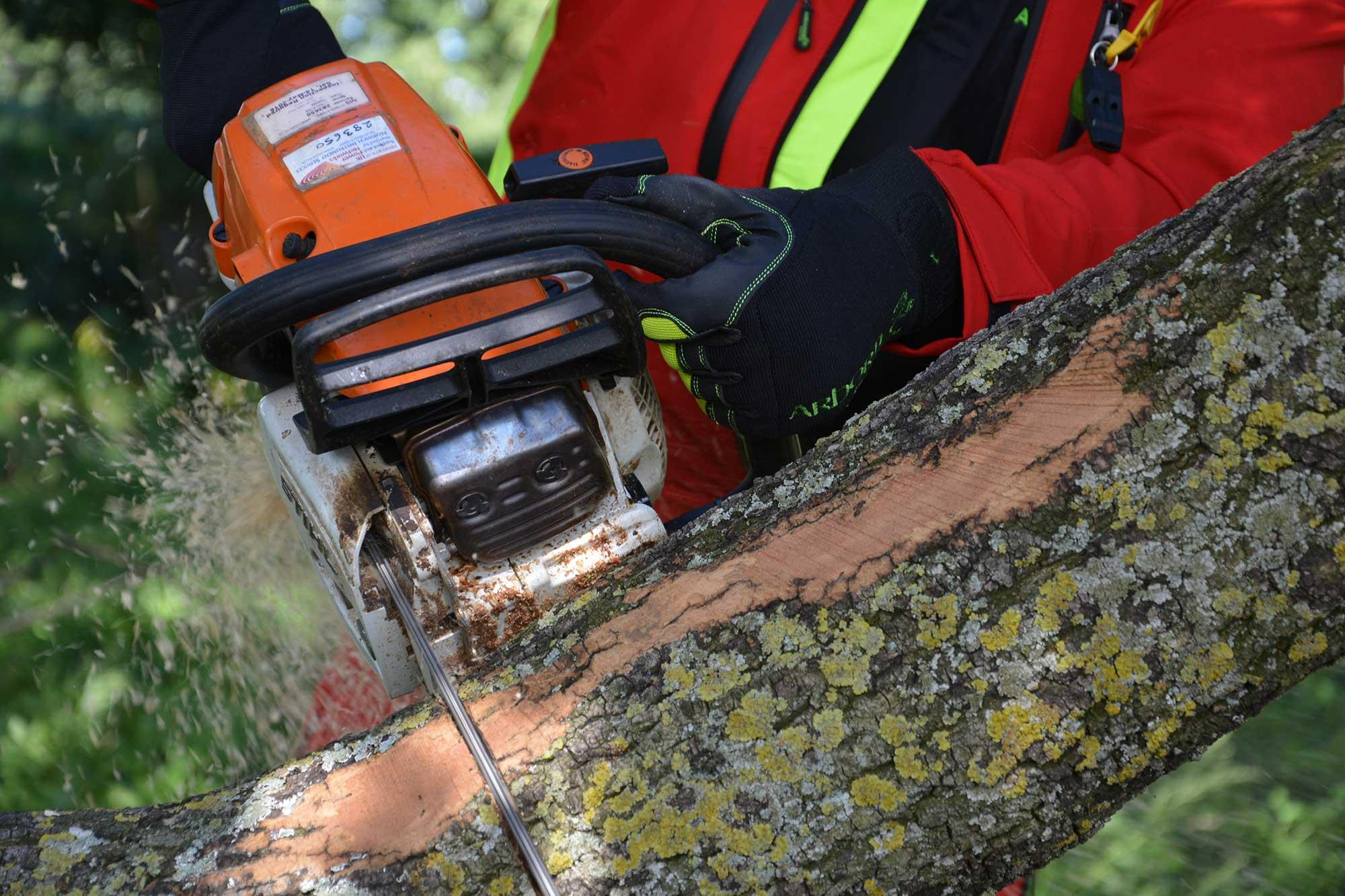 man is cutting the round log with a chainsaw