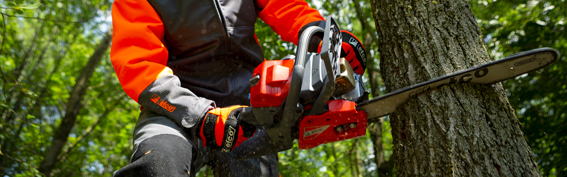 chainsaw is cutting the tree