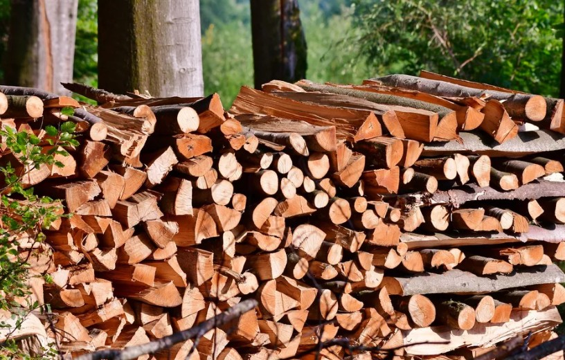 11 Tips How to Stack Firewood - Best Detailed Manual